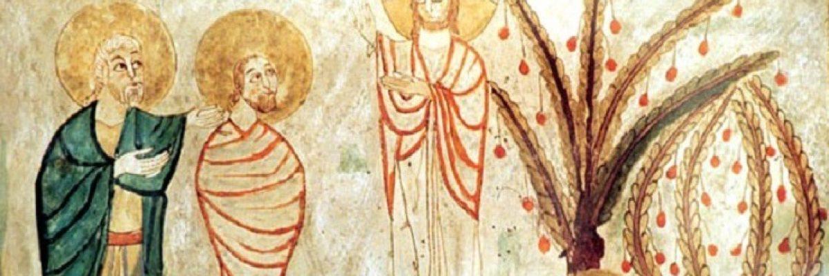 transfiguración2 - copia